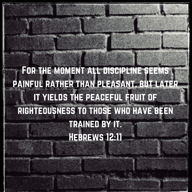 Discipline Yields the Fruit of Righteousness
